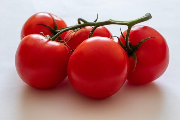 흰색 바탕에 나뭇가지에 빨간 토마토