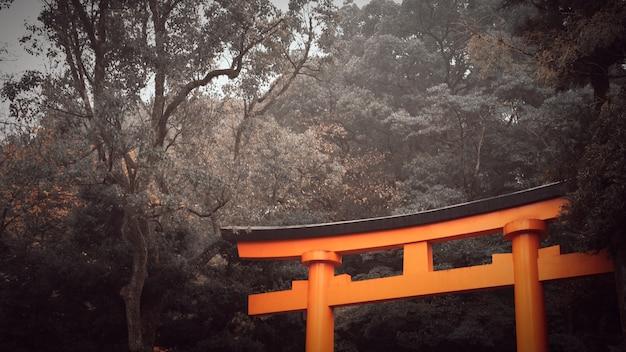 Красный строб torii святыни на предпосылке неба с космосом экземпляра на киото, японии.