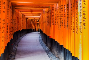 Red Torii gates in Fushimi Inari shrine