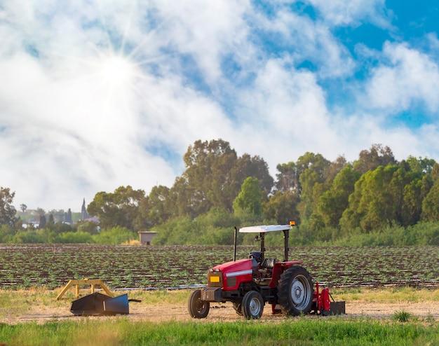 Красный трактор в поле во время летнего сбора урожая. современный старый трактор на сельскохозяйственном поле в солнечный летний день. закатный свет, сельское хозяйство пейзажное поле с трактором пути, выборочный фокус