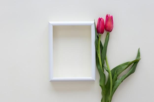 Red tulip flowers and white border photo frame on white desk