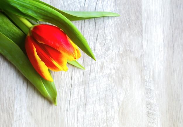 木製の背景に赤いチューリップ。母の日または国際女性デーの招待はがき。広告や宣伝のためのミニマリストの明るい花。春の花。 Premium写真