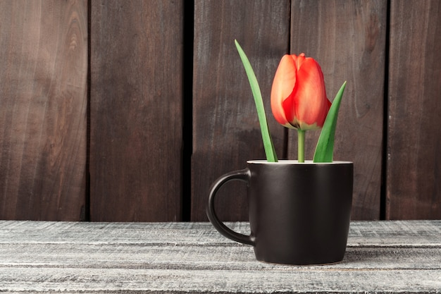 빨간 튤립은 어두운 나무 테이블에 컵에 서