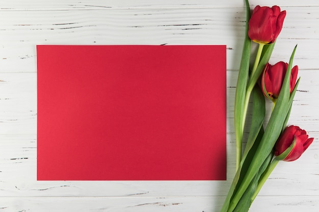Red tulips and blank card paper on white wooden textured backdrop