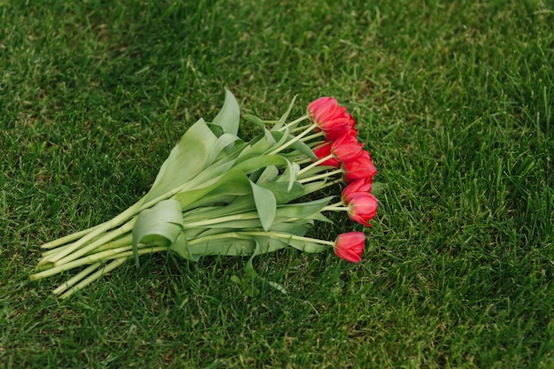 Red tulips on grass. bouquet of flowers on green background.