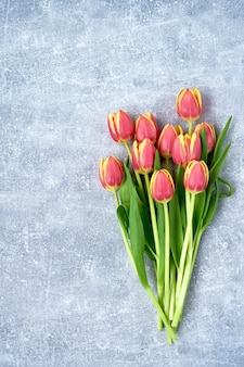 Red tulips on gray concrete.