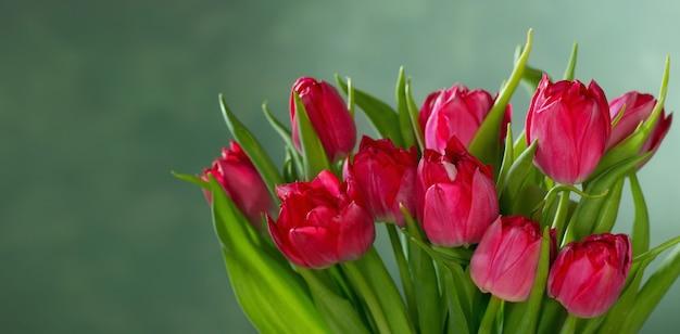 Красные тюльпаны на зеленом фоне