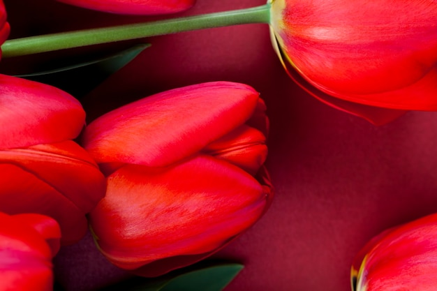 Red tulips with bright petals in a bouquet