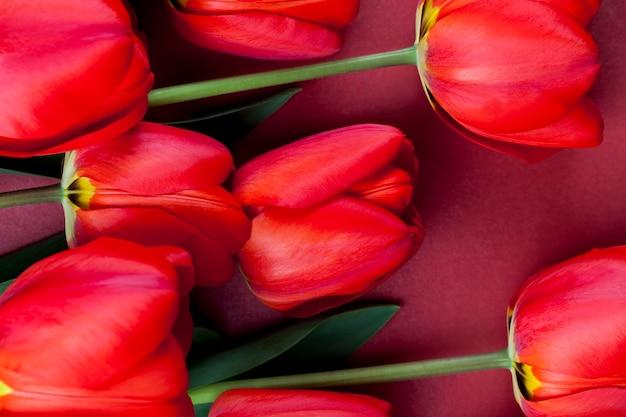 Красные тюльпаны с яркими лепестками в букете