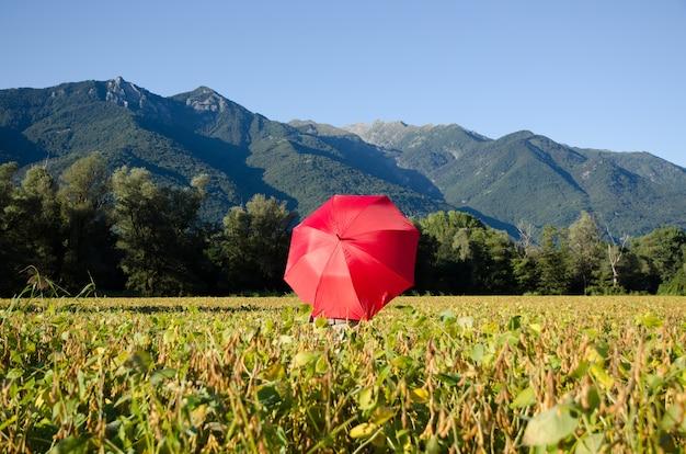 Ombrello rosso in un campo circondato da colline ricoperte di vegetazione sotto la luce del sole e un cielo blu