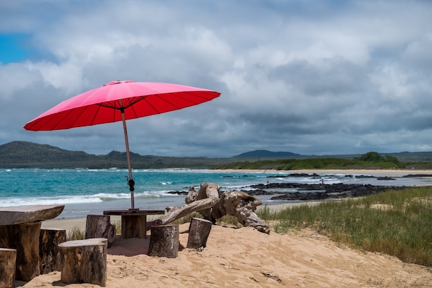 エクアドルのガラパゴス諸島のビーチで人々に日陰を提供する赤い傘