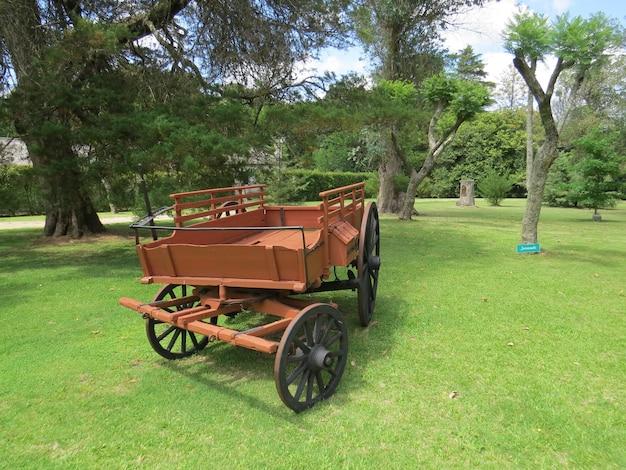 Красный вагон в зеленом поле