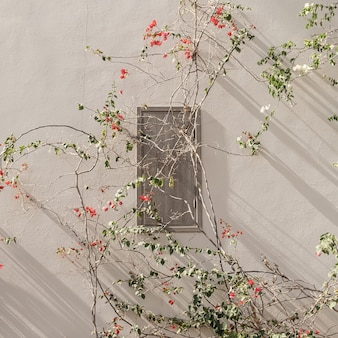 Red and white flowers branch, leaves on neutral beige concrete wall