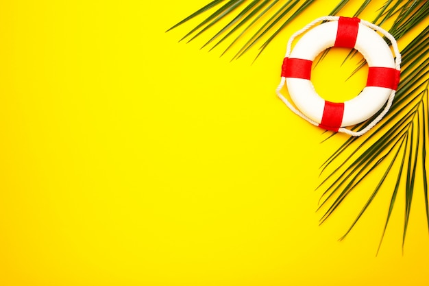 Red-white lifebuoy with palm leaf on yellow background