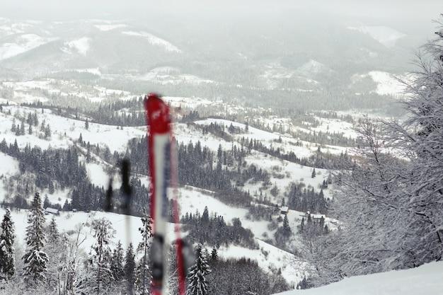 Sci rossi e bianchi messi nella neve con vista sulle montagne