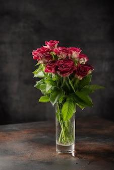 Красные дикие розы на темном фоне, выборочный фокус изображения
