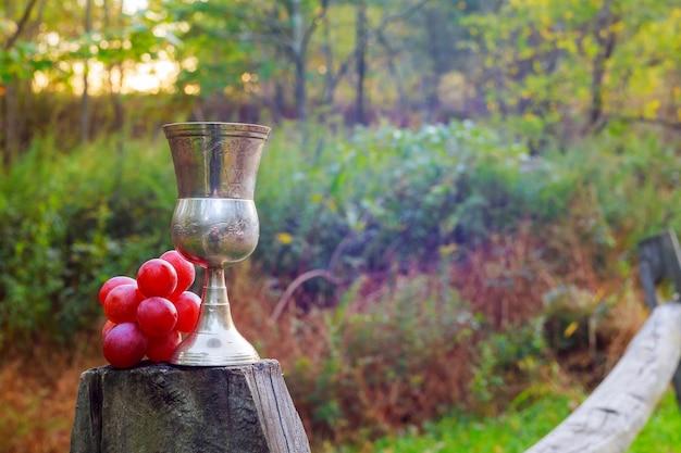 Бокал красного вина и гроздь винограда на деревянном столе против виноградника летом