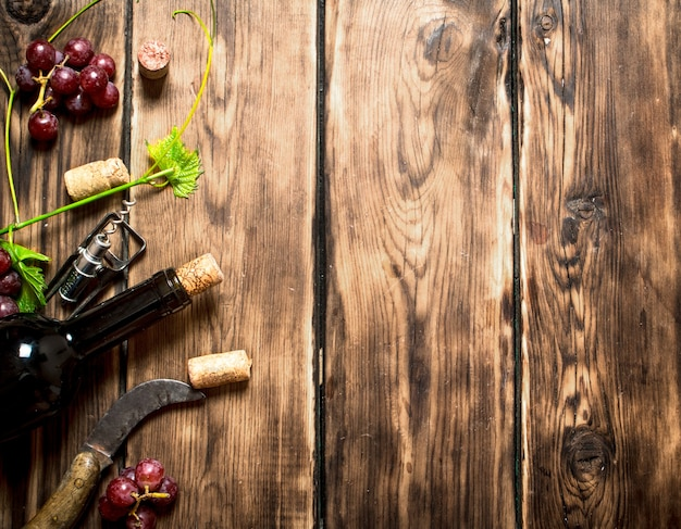 Red wine with a vine branch  on wooden table.