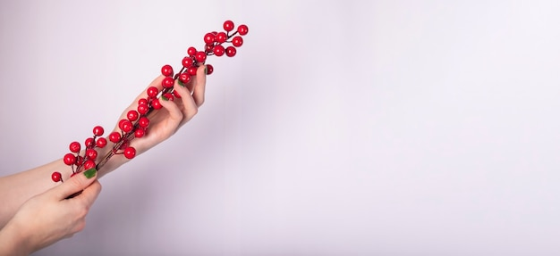 Red winterberry branch in female hands on white background. banner with place for text