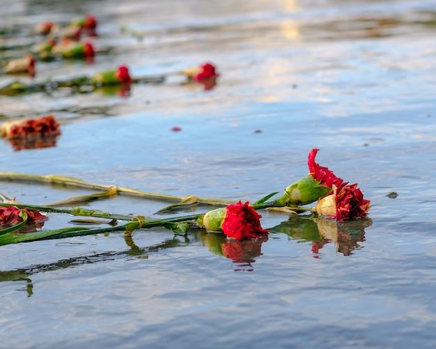 赤い枯れたカーネーションは、濡れた光沢のある石の表面に横たわっています