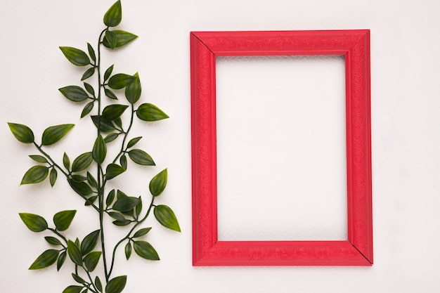 Red wooden border frame near the fake green plant isolated on white backdrop