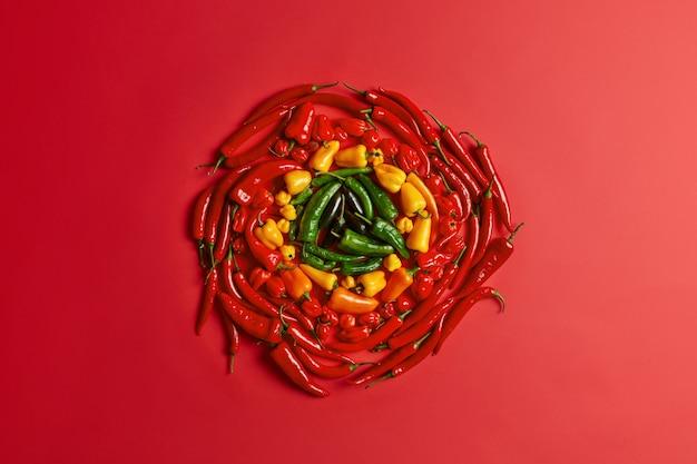 赤の背景に円を描くように配置された赤黄色とピーマン。カラフルな新鮮な野菜。ハイアングルビュー。クリエイティブなレイアウト。辛味のある唐辛子。ベジタリアンダイエットの概念。多種多様