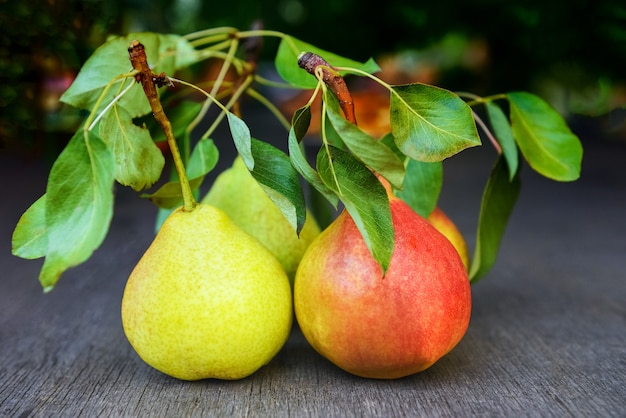 Red and yellow pears with green leaves on a wooden table close-up