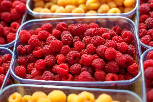 Red and yellow raspberries in boxes, healthy food concept.