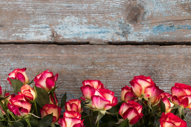 Red and yellow roses on wooden, copy space
