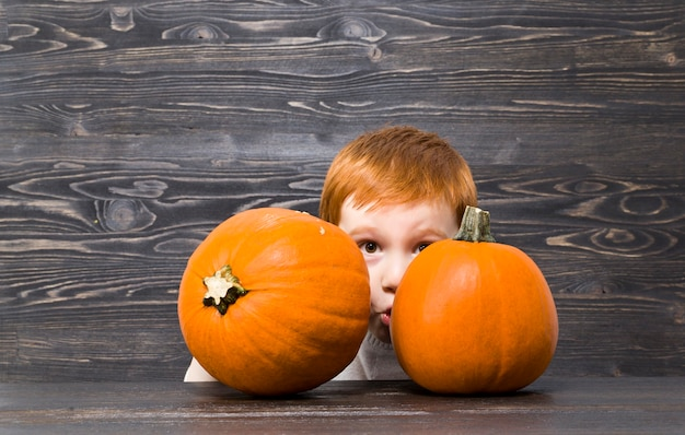 赤毛の少年はオレンジ色のカボチャの後ろに隠れました