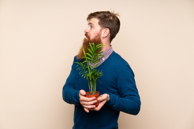 Redhead man with long beard taking a flowerpot