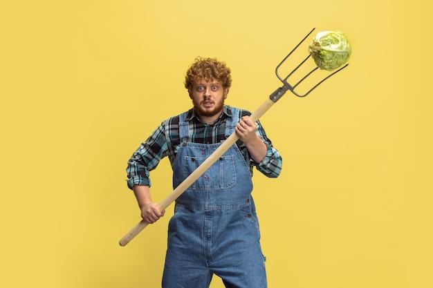 노란색 스튜디오 벽에 격리된 야채 수확을 하는 빨간 머리 수염 난 남자 농부