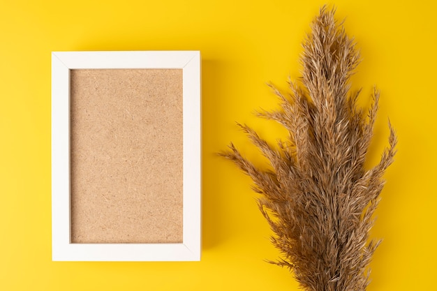 Reed pampas grass on a yellow background with white frame frame background with copy space