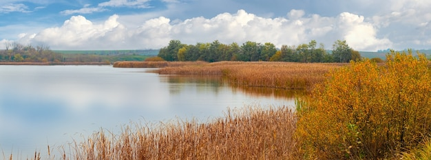 Reed thickets on the river in autumn in good weather, reflecting clouds in the river