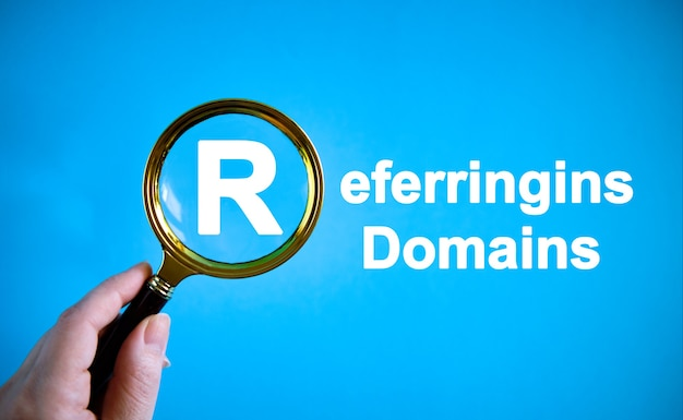 Referrings domains - text with a magnifying glass on a blue background