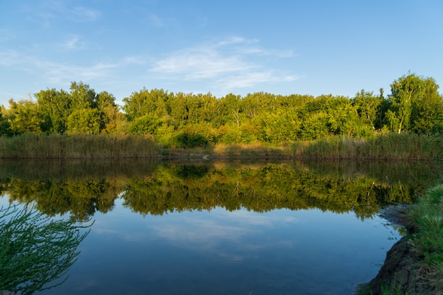 Reflection of forest and sky in a calm river in early autumn on a sunny sunset day.