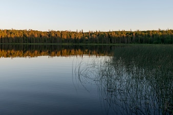 Reflection of trees on lake, Lake Audy Campground, Riding Mountain National Park, Manitoba, Canada