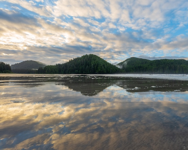 Reflection over the sand as the tide goes out at san josef bay, vancouver island, british columbia, canada.