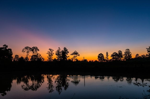 Reflection in the small pond of the forest at sunrise with the beautiful orange light