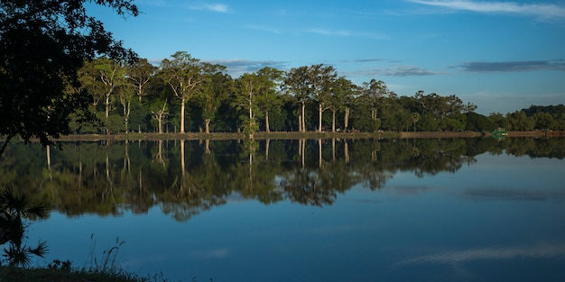 Reflection of trees and clouds on water, tonle sap, cambodia