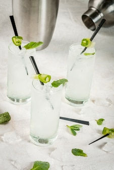 Refreshing cucumber gin and tonic