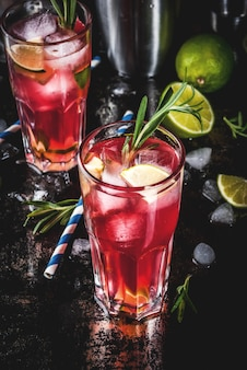 Refreshment alcoholic red cranberry and lime cocktail with rosemary and ice, two glass, dark   copyspace