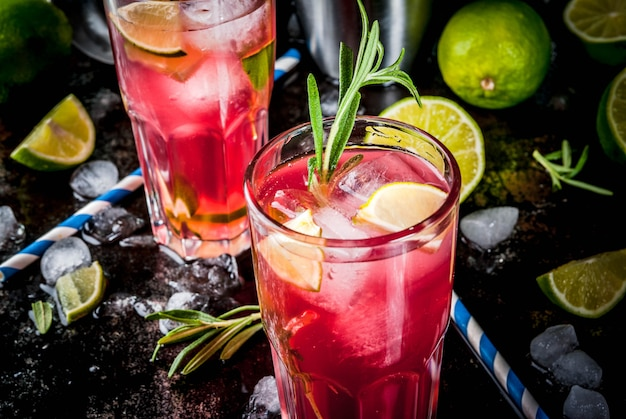 Refreshment alcoholic red cranberry and lime cocktail with rosemary and ice, two glass
