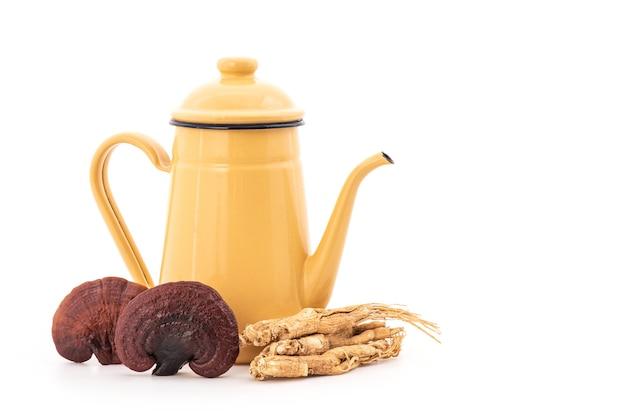 Reishi or lingzhi mushroom, ginseng and teapot on natural surface.