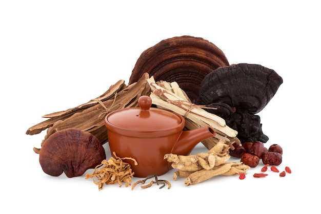 Reishi or lingzhi mushroom ,goji berry ,jujuba,ginseng and cordyceps sinensis  isolated on white background with clipping path.