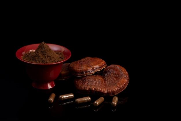 Reishi, lingzhi 또는 ganoderma lucidum 버섯 검정색 배경에 고립