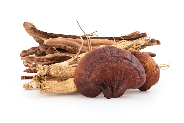 영지 또는 lingzhi 버섯과 인삼 흰색 배경에 고립.