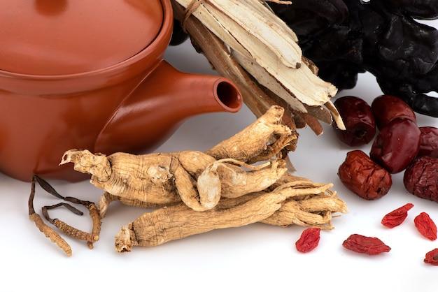 Гриб рейши или линчжи, ягоды годжи, жужуба, женьшень и кордицепс китайский, изолированные на белом фоне