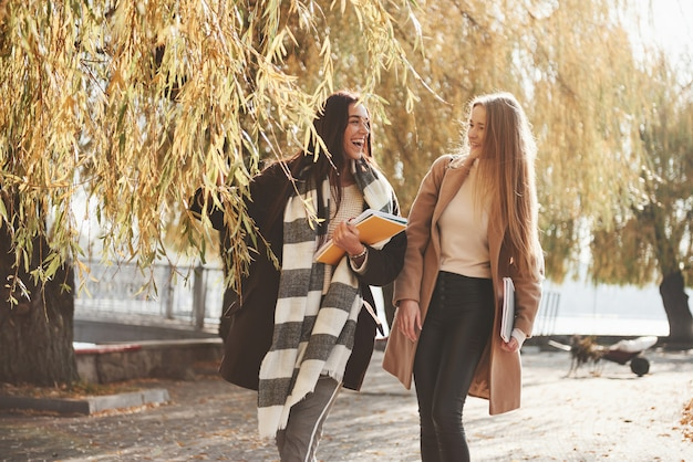 Relaxed atmosphere. female friends have a walk through the beautiful autumn park