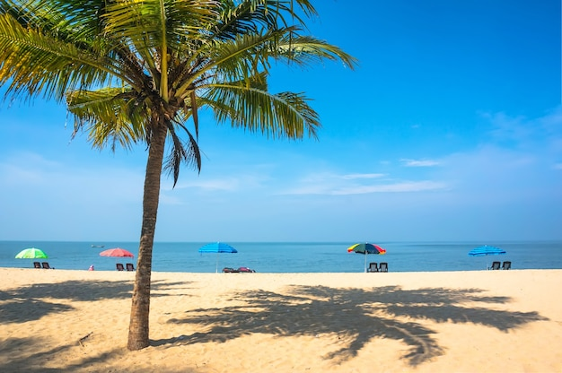 Relaxing under a palm tree on remote beach in india